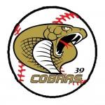 Pittsburgh Cobras