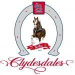 StLouis Clydesdales 2012